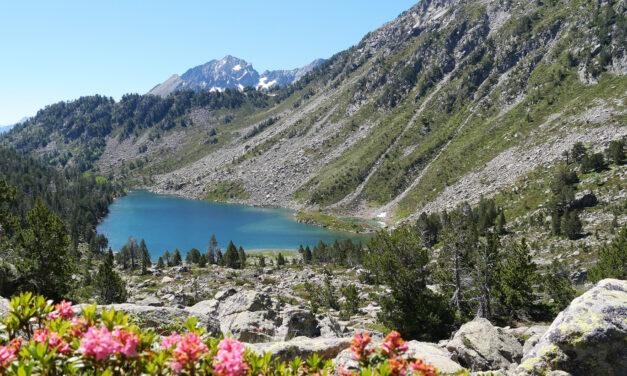 Piau-Engaly i les seves muntanyes t'esperen aquest estiu