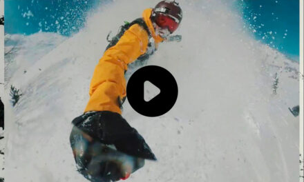 HELP SNOWBOARDS 2020-2021