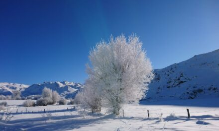 Rècord de temperatura negativa a Espanya: -35,8ºC